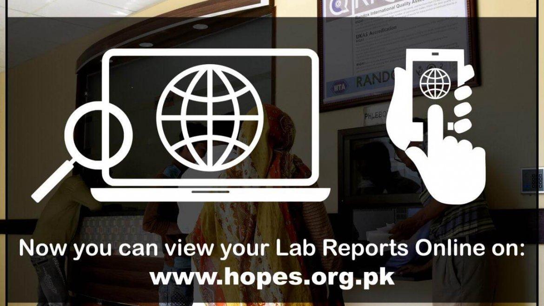 Introducing Online Reports for HOPES Diagnostics